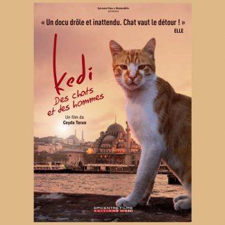 Kedi - Des chats et des hommes - Documentaire réalisé par Ceyda Torun