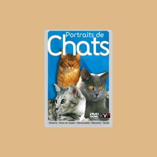 Documentaire Portraits de chats