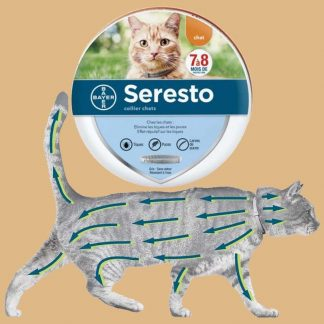 Seresto - Collier antiparasitaire pour chat - Elimine les tiques et les puces