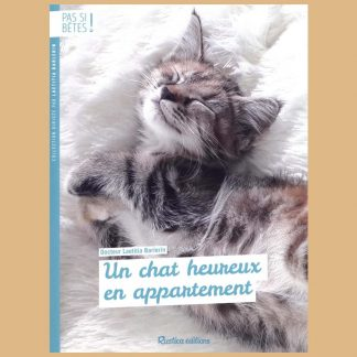 Un chat heureux en appartement par Laetitia Barlerin