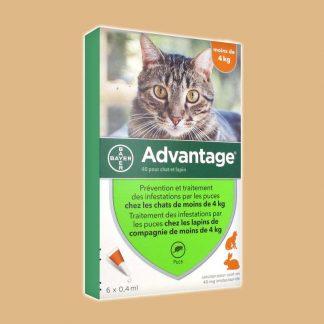 Antiparasitaire contre les puces pour chat de moins de 4 kg - Advantage 40