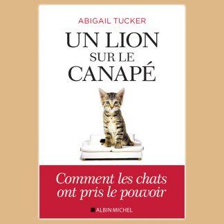 Un lion sur le canapé de Abigail Tucker