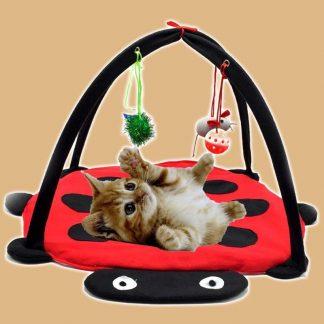 Tapis de jeu pour chaton en forme de clamoiselle