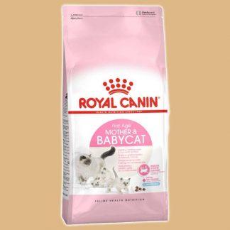 Croquettes Royal Canin pour chatte et chatons