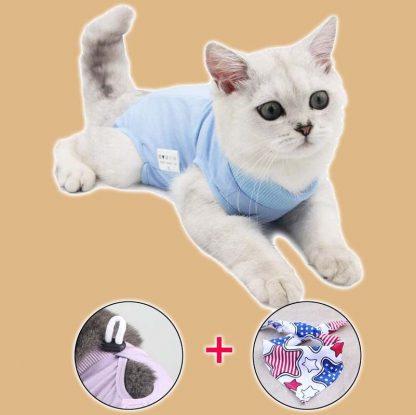 Gilet de protection pour chat