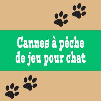 Cannes à pêche de jeu pour chat