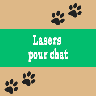 Lasers pour chat