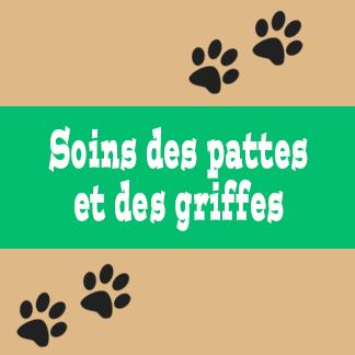 Soins des pattes et des griffes pour chat