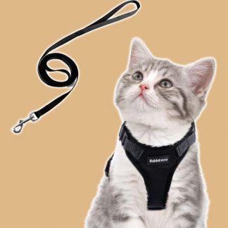 Harnais réglable pour chat avec laisse