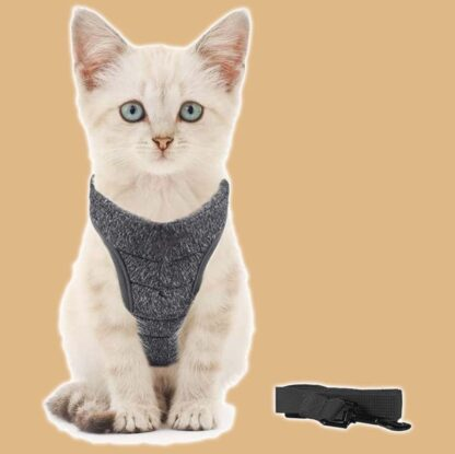 Harnais sécurisé pour chat